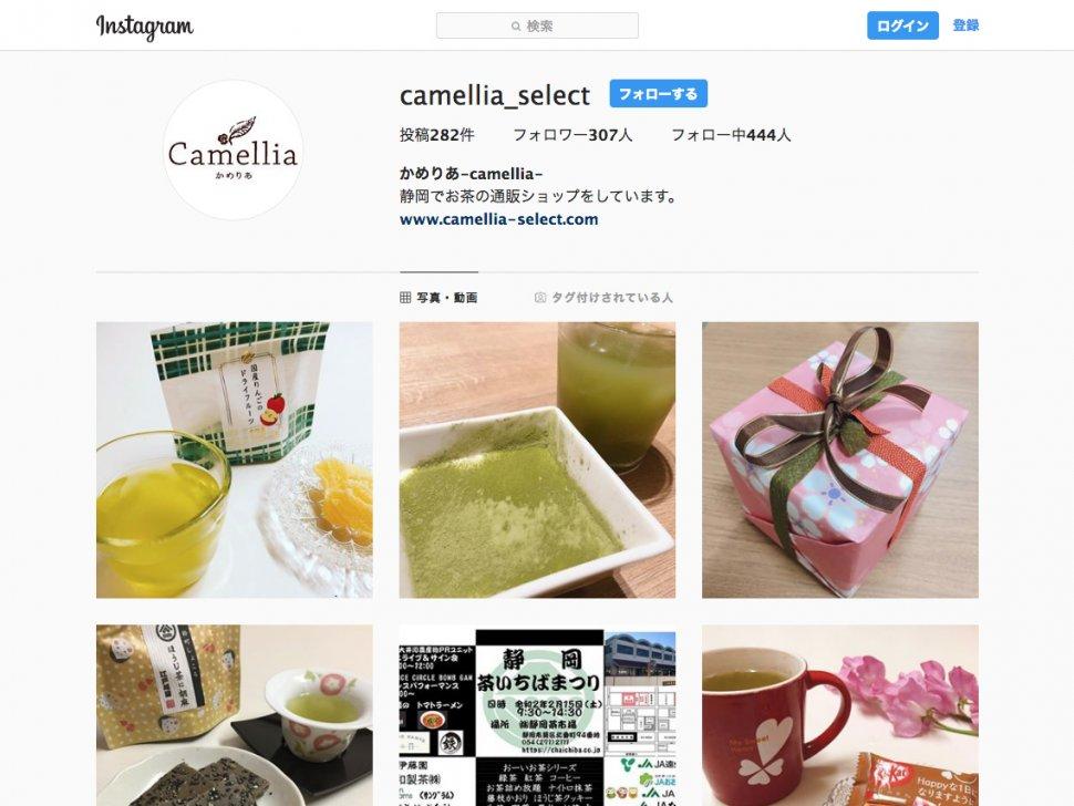 camellia_sns